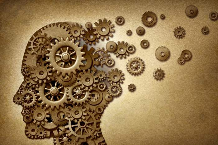 extraverted thinking (Te)