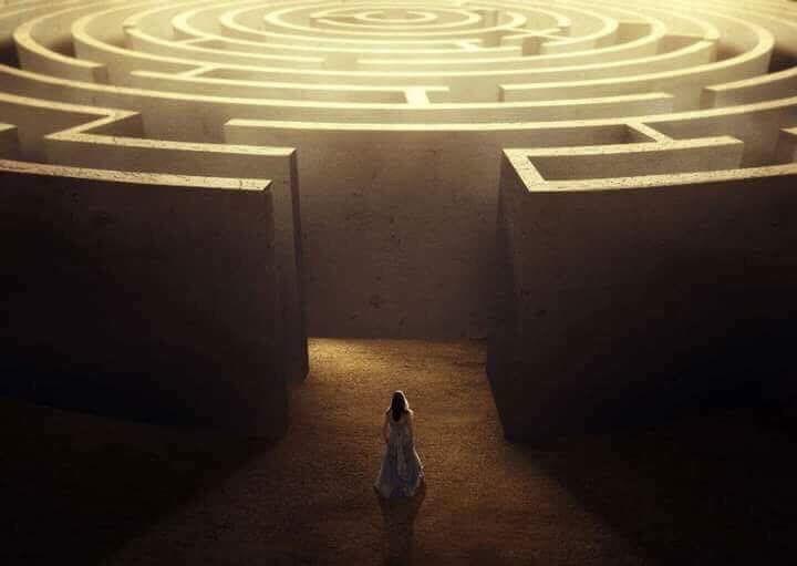 intp maze metaphor