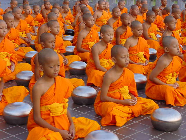 meditation executive control