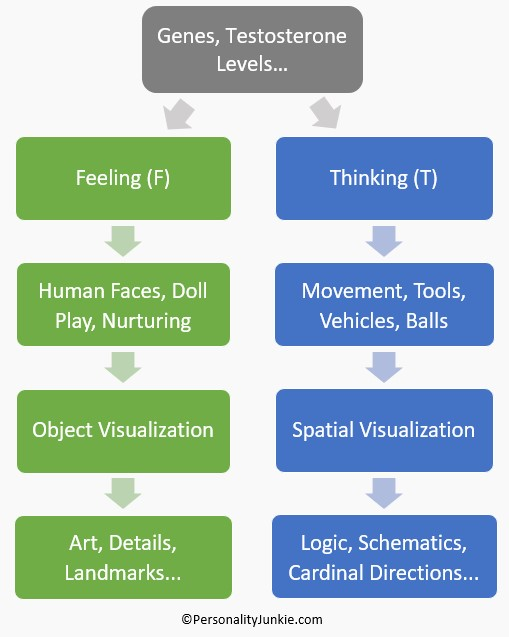 Thinking, Feeling & Cognitive Style Chart