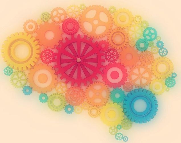 Intuition Brain